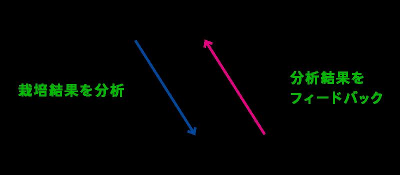 栽培結果を分析 分析結果をフィードバック